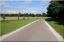 SK4663 : Access road to Hardwick Hall by Philip Halling