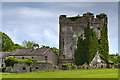 M5436 : Castles of Connacht: Monivea, Galway by Mike Searle