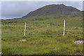 NG8557 : Hillside above the Diabaig road by Nigel Brown