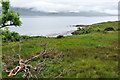 NM7701 : View from the Old Chapel, Craignish by Stuart Wilding