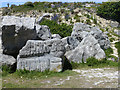 SY6872 : Sculptures at Tout Quarry by Oliver Dixon