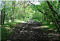 TQ1336 : Sussex Border Path by N Chadwick