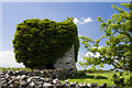 M5016 : Castles of Connacht: Ballylin, Galway (1) by Mike Searle