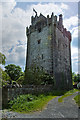 M5320 : Castles of Connacht: Caherkinmonwee, Galway (1) by Mike Searle