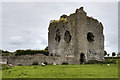 M8711 : Castles of Connacht: Longford, Galway (1) by Mike Searle
