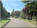 SU7447 : White Hill north of Long Sutton Primary School by Stuart Logan