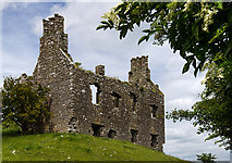 M8738 : Castles of Connacht: Cloonbigny, Roscommon (3) by Mike Searle