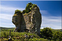 G8341 : Castles of Connacht: Castletown, Leitrim (2) by Mike Searle