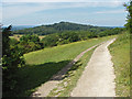 TQ0449 : Chalk path, Albury Downs by Alan Hunt