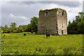 N6135 : Castles of Leinster: Kinnafad, Kildare by Mike Searle