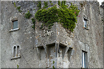 M9711 : Castles of Leinster: Cloghan, Offaly (3) by Mike Searle