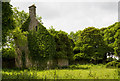 M9242 : House at Corkip, Co. Roscommon (2) by Mike Searle