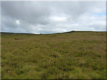 SH7842 : Moorland to the northwest of Cefngarw by Richard Law