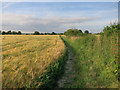 TL3546 : Footpath to Orwell by Hugh Venables