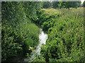 TL3647 : River Cam (or Rhee) by Hugh Venables