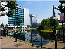 TQ3880 : Pond, bus and offices in Tower Hamlets by Shazz