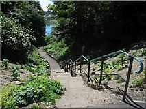 NT9953 : Steps to the riverside, Castle Vale Park by Graham Robson