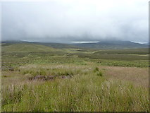 SH7843 : Extensive moorland towards the Arenigs by Richard Law