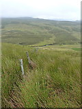 SH8043 : Down the fenceline above Trawsnant by Richard Law