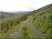 SH8043 : Track to Cefngarw by Richard Law