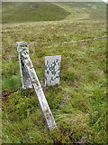 SH8142 : County boundary stone and fenceline by Richard Law