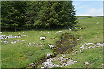 SD8970 : Thoragill Beck by Ian S