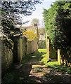SX4771 : Track into Walreddon Manor by Derek Harper