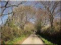 SX4771 : West Devon Way near Walreddon by Derek Harper