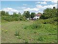 TQ0074 : Rough pasture, Wraysbury by Alan Hunt