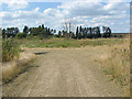 TQ0075 : Disused gravel pits, Wraysbury by Alan Hunt