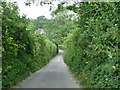 SU6513 : Pithill Lane by Robin Webster