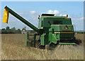 TA0213 : Combining Oilseed Rape near Worlaby by David Wright
