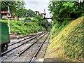 SU5832 : Watercress Line, New Alresford by David Dixon