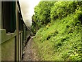 SU7138 : The Watercress Line Approaching Mount Pleasant Road Bridge by David Dixon