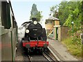 SU6635 : The Watercress Line, 31806 at Medstead and Four Marks Railway Station by David Dixon