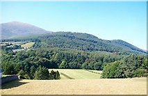 J3532 : View across the Shimna Valley to woodland in the Tollymore Forest Park by Eric Jones