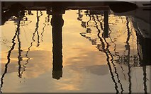 SX9163 : Reflections, Torquay old harbour by Derek Harper