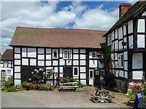 SO3958 : New Inn, Pembridge, Herefordshire by Christine Matthews