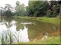 TQ4123 : Storage Pond - Sheffield Park by Paul Gillett