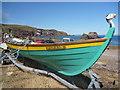NT9167 : Coastal Berwickshire ; Puffin At St Abbs by Richard West