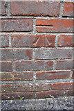 ST6076 : Benchmark on #17 Brangwyn Grove by Roger Templeman