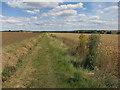 TL2566 : Bridleway to A1198 by Hugh Venables