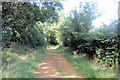 SP8908 : Track to the Dancersend Nature Reserve by Chris Reynolds