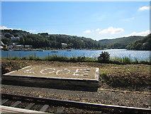 SX2553 : At Looe Station by Ian Knight