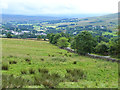 NY7247 : Hillside above Alston by Oliver Dixon