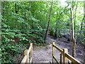 TQ7314 : Bridge in Powdermills Wood by PAUL FARMER