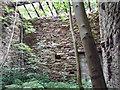 SJ9672 : Ruin interior Macclesfield Forest by Stephen Burton