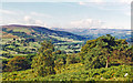 SK2480 : Panorama of Upper Derwent and Hope Valley from Booth's Edge, 1996 by Ben Brooksbank
