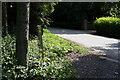 SE6247 : Path marker post near Tillmire Farm by Ian S