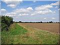 TL4663 : Towards Impington by John Sutton